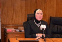 وزيرة التجارة تصدر قرارًا بوقف تصدير الفول الحصى والمدشوش لـ3 أشهر