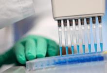 جامعة الوادي الجديد: اختراع تركيبة كيميائية تقتل كورونا في 60 دقيقة