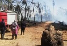 السيطرة على حريق هائل بحظيرة ماشية في المنوفية