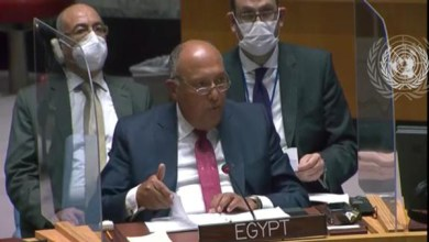 نص كلمة وزير الخارجية أمام جلسة مجلس الأمن بشأن سد النهضة