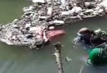 الإنقاذ النهري ينتشل جثة طالب ثانوي من مياه بحر أبو دشيش بمدينة بيلا