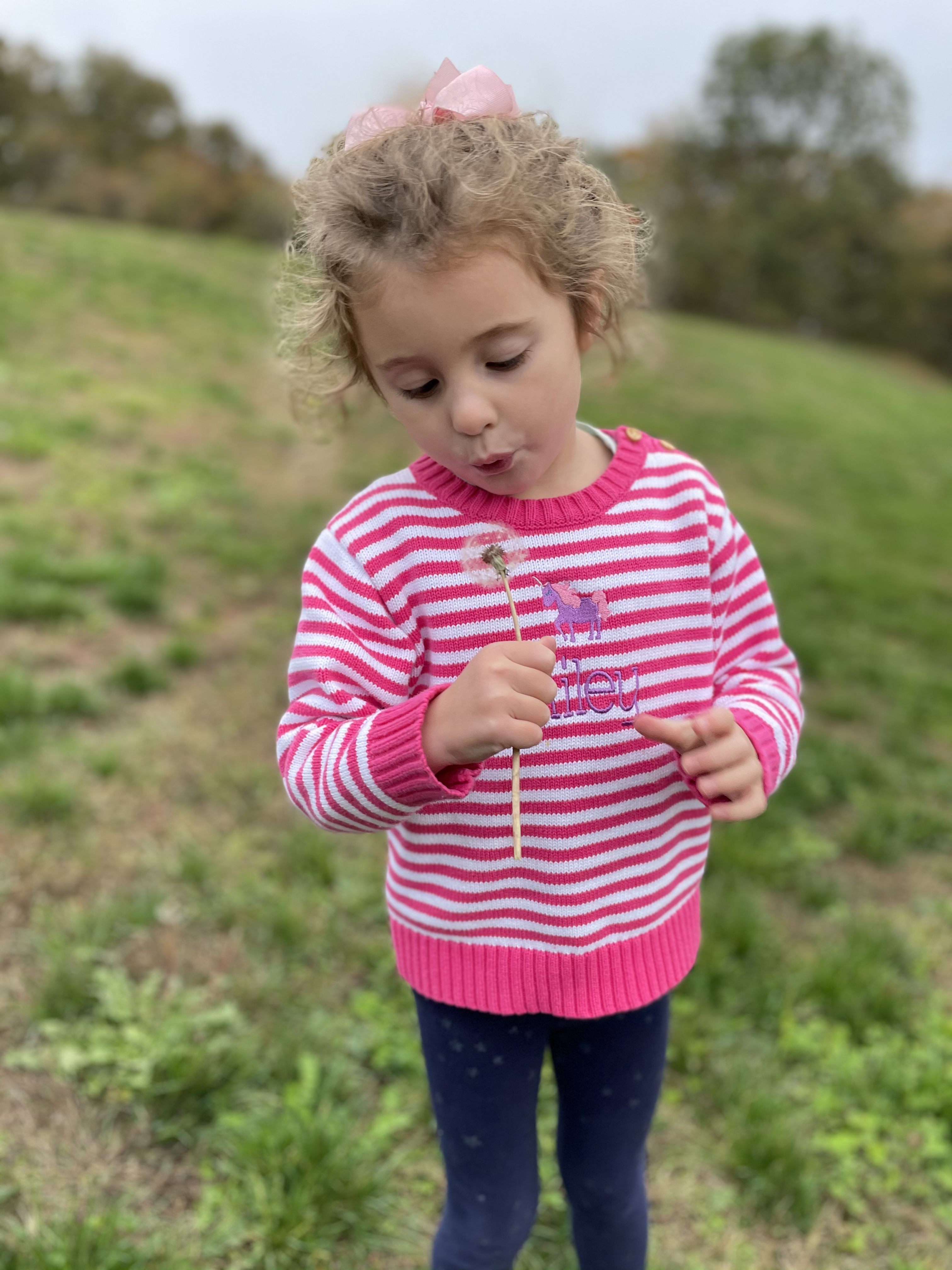 little girl blowing dandelion october