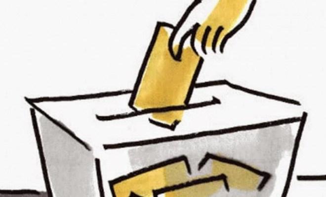 Consultá los padrones electorales 2019
