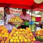 Promoverán cultivo y comercialización de durazno, pera y otros