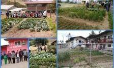 Foto de <Cajamarca registra el menor porcentaje de anemia a nivel nacional