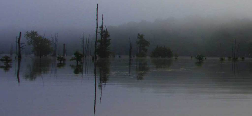 This is an early foggy morning photo taken from the cabin dock prior to a fishing trip. It turned out to be a very foggy morning and rainy day.