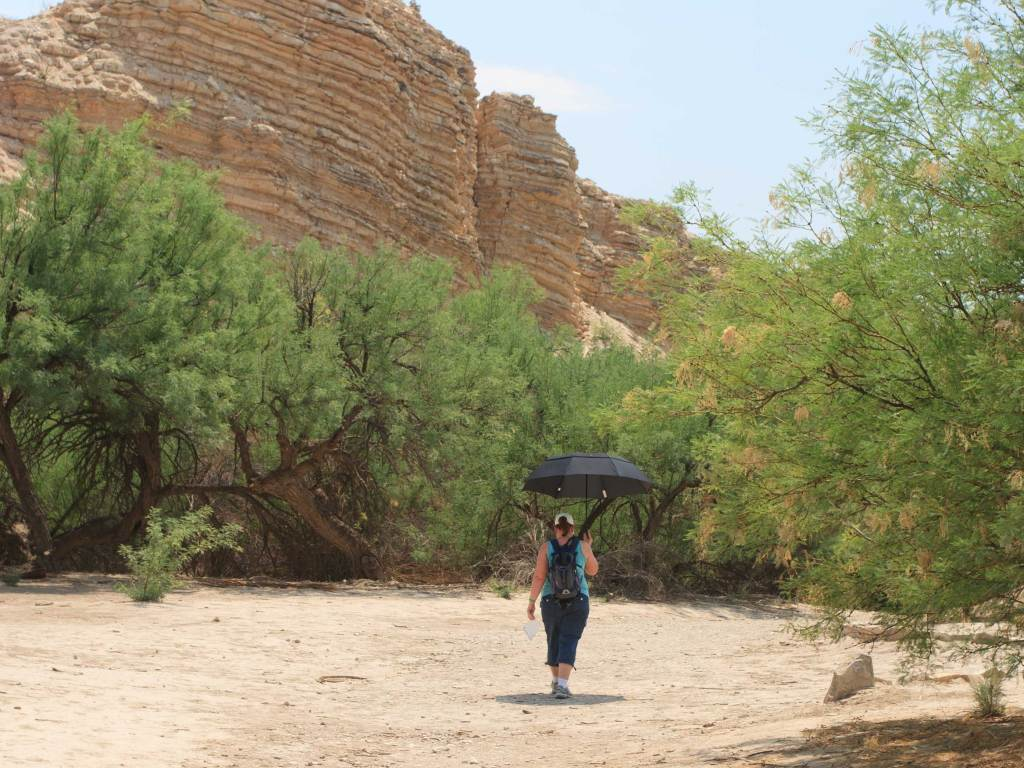 An umbrella is part of the hiking gear carried to combat the desert heat, in April, while hiking to the Hot Spring on the Rio Grande.
