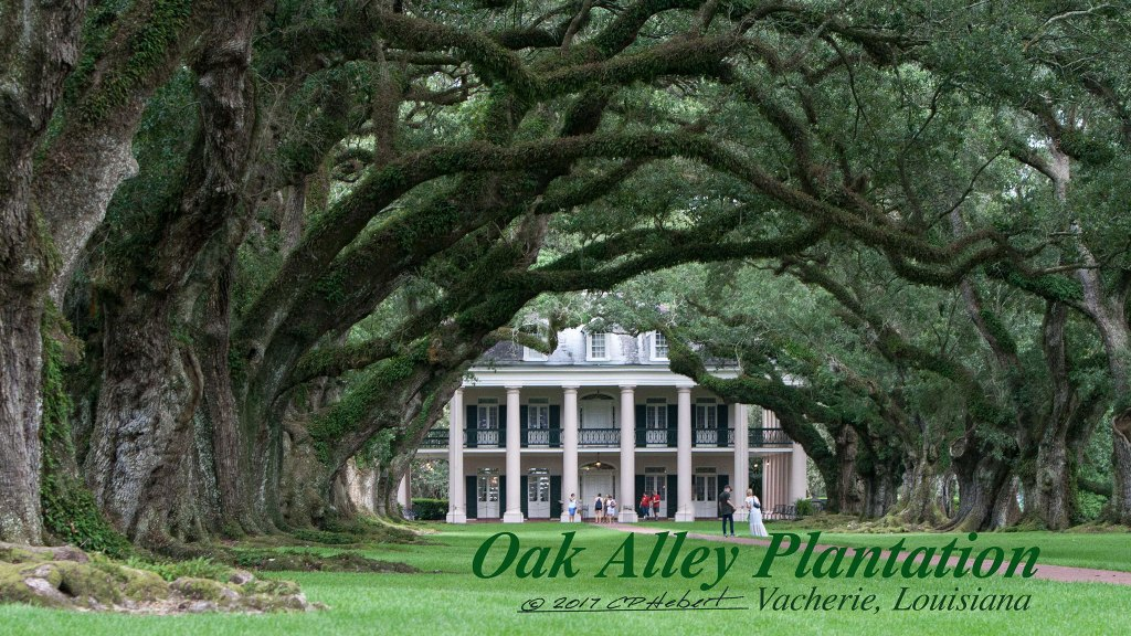 A view of Oak Alley from River Road. This wide gallery and twenty-eight live oaks planted over 300 years ago frame the front of the home.