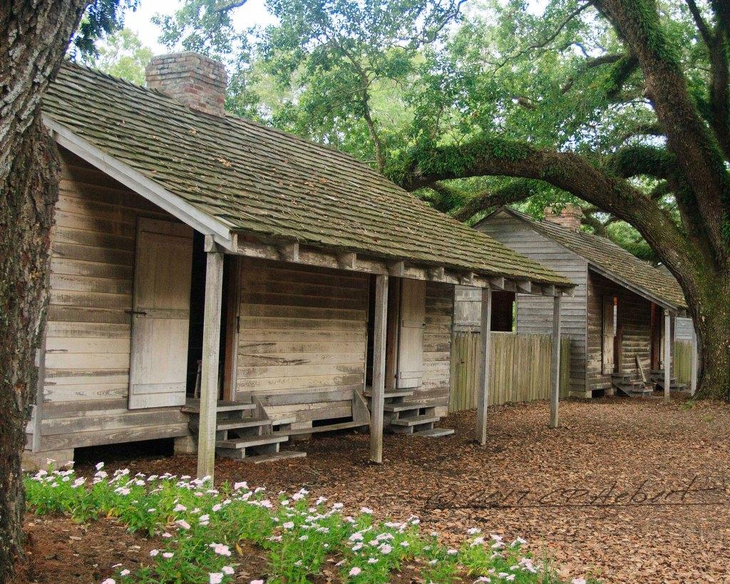 Louisiana Road Trip to Oak Alley Plantation
