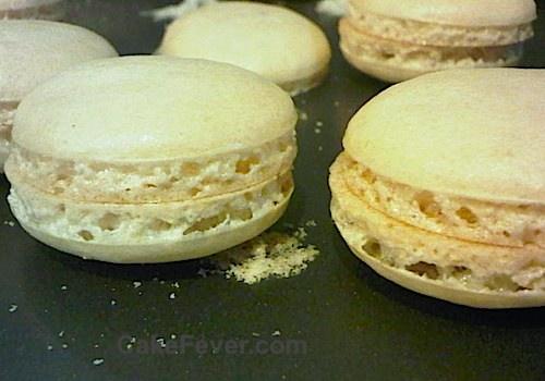 Kaki French Macaron