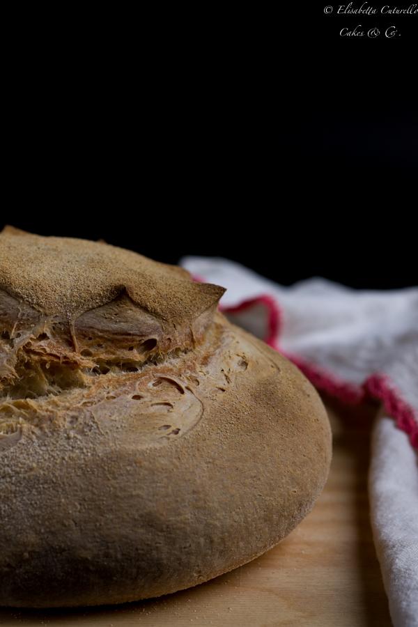 Pane bianco semplice – Il mio pane quotidiano