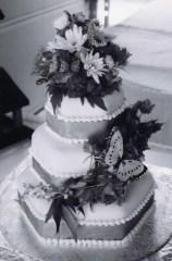 Scott and Elizabeth wedding party cake