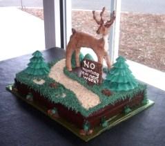 custom-cakes-charlotte-nc-134