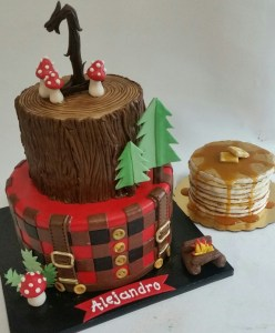 PNW Cake, log cake, fondant cake portland, plaid buffalo check cake