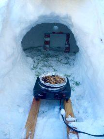 Diy Cold Smoking In Igloo Snow Cave - Cake Websites