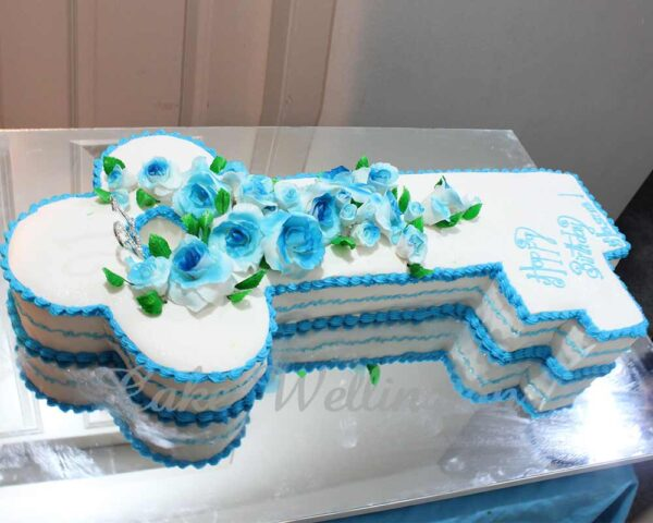 21st Birthday Cake And Cakes For Girl Boy Designs From