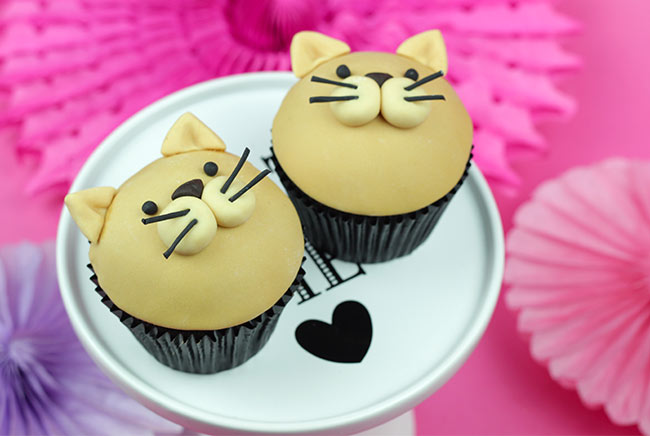 Cat Cupcakes Cakey Goodness