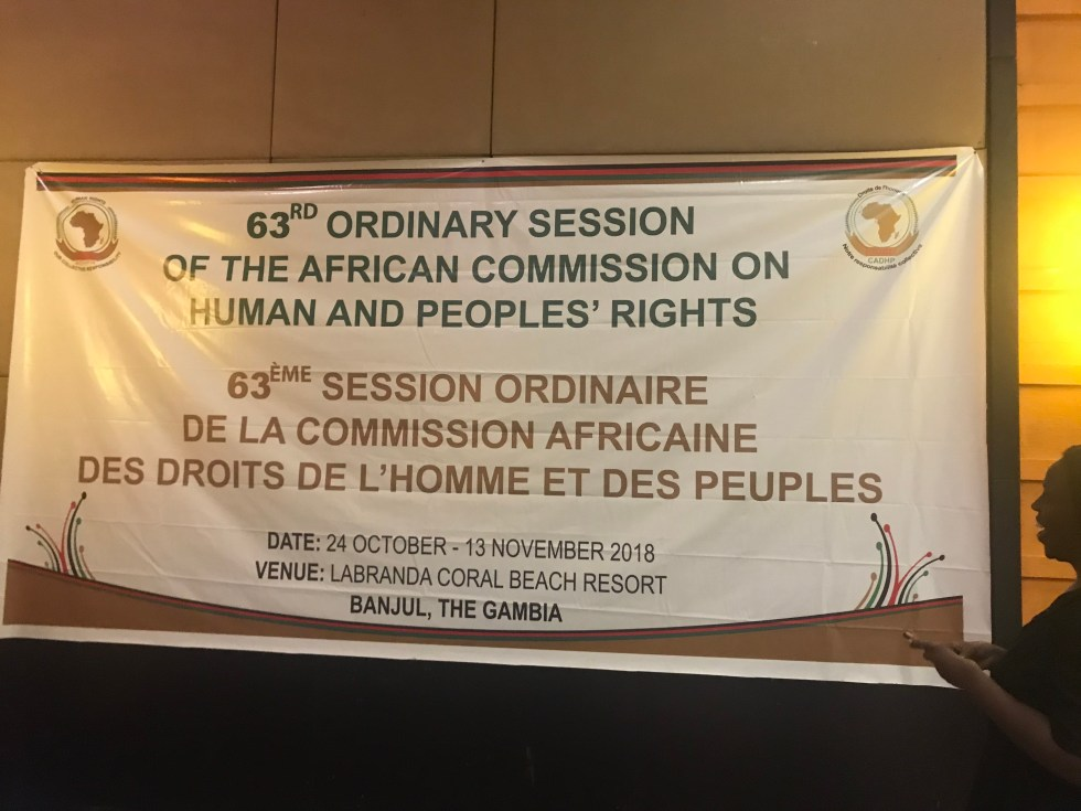 AIDS And Rights Alliance For Southern Africa (ARASA) Statement At The 63rd Ordinary Session Of The African Commission On Human And Peoples' Rights