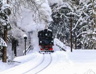 Il treno a vapore della Sila in viaggio per Natale
