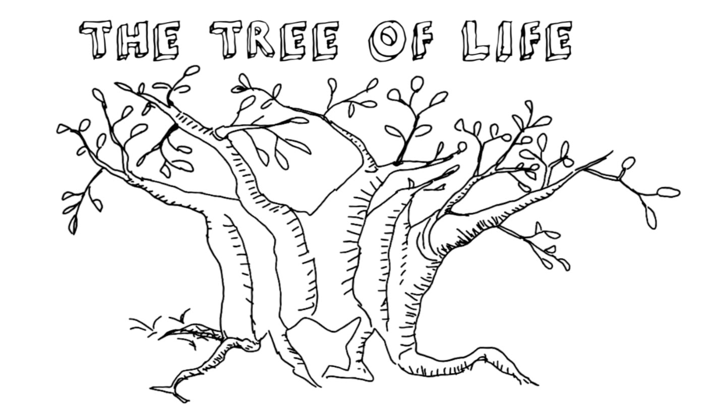 Video Discovering The Tree Of Life