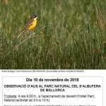 Observació d'aus i jornada de bolets al Parc Natural de s'Albufera de Mallorca