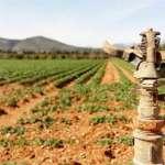 ASAJA BALEARS denuncia el retraso de dos años por parte del Fons de Garantia Agrària i Pesquera de les Illes Balears en las ayudas del programa de desarrollo rural