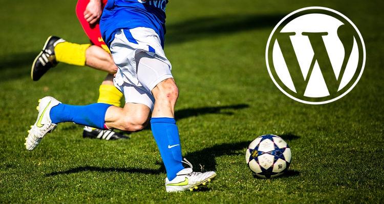 wordpress-temi-siti-blog-magazine-ecommerce-sportivi