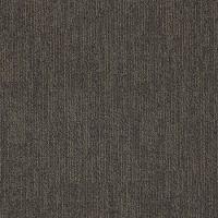 Shaw Mesh Contract Carpet Tile