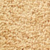 Buy Bliss HealthyTouch Carpet