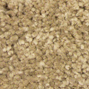 Bliss HealthyTouch Dearest Carpet