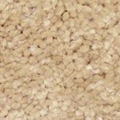 Bliss HealthyTouch Devoted Carpet