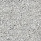 Dixie Home Spinnaker Carpet