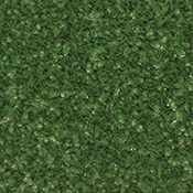 Buy Grass Carpet