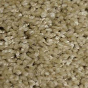 Phenix Palmetto Carpet