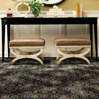 Carpet Olympia - Carpet Ideas