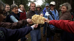 "Participants in the annual ""Fungal Foray"" held in Point Reyes National Seashore every January, inspect an extraordinarily large fungus. Photo Credit: Kit Taylor"