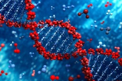 Международный День ДНК