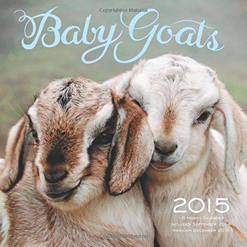 Cute Baby Farm Animals Wall Calendar 2017