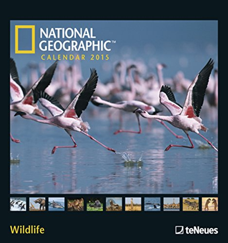 Nature Wildlife photography wall calendars 2019