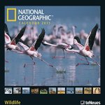 national geographic calendar