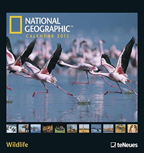 Nature Wildlife photography wall calendars 2019