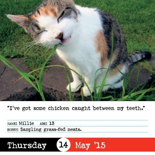 bad-cat-calendar