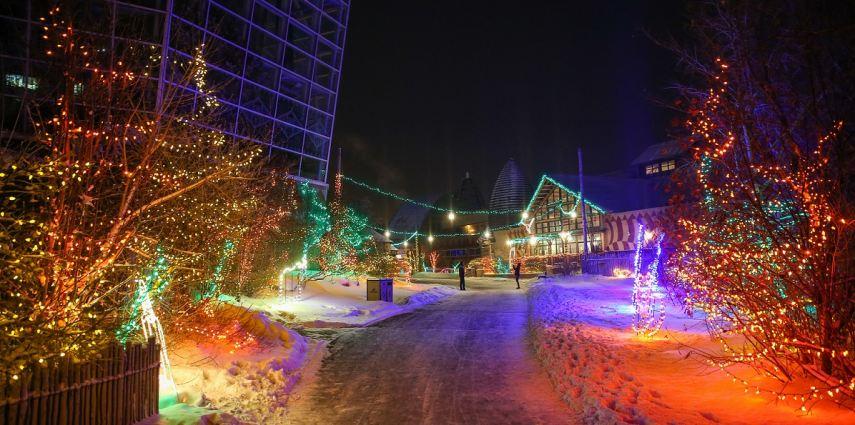 Calgary Zoo Lights Tickets