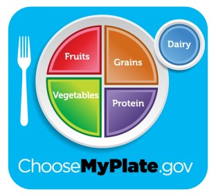 My plate, the USDA's new food icon, suggests that fruits and vegetables should comprise half of a healthy meal.