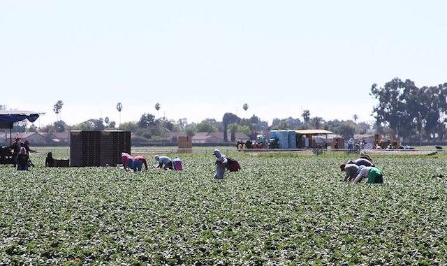 Photo: Rosa Ramirez/California Health Report