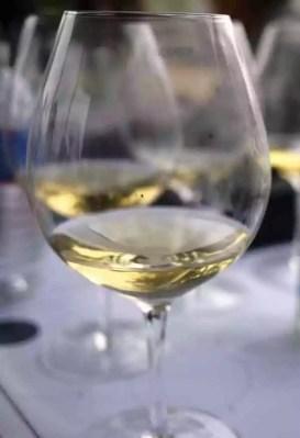 Chardonnay Symposium in Santa Barbara wine country