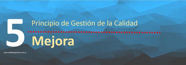 PRINCIPIOS DE GESTION DE CALIDAD - MEJORA