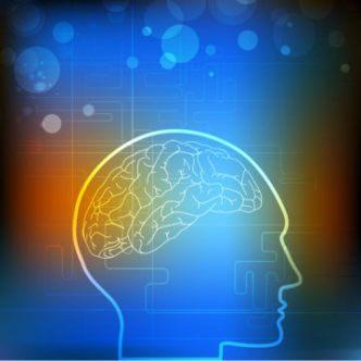 Optimal Leadership Brain Performance