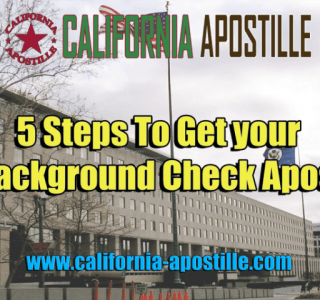 How To Get your FBI Background Check Apostille