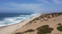Marina California - Destination Profile Beaches
